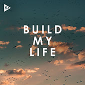 Build My Life by Various Artists