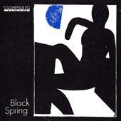 Black Spring de The Seatbelts