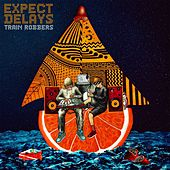 Expect Delays by The Trainrobbers