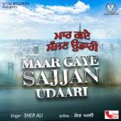 Maar Gaye Sajjan Udaari by Sher Ali