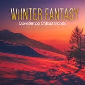 Winter Fantasy (Downtempo Chillout Moods) by Medwyn Lindstaed, Chilhouette, Simplify, Hirudo, Mehndi, Blue Lagoona, Sven Van Paapen, Mooncircle, Massive Gold, Silversparrow, Rainfairy, Quatoo, Gaze