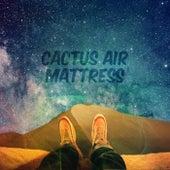 Cactus Air Mattress de Grant Cook