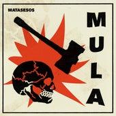 Matasesos di Mula