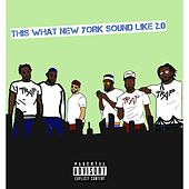 This What New York Sound Like 2.0 by Dcash Rich Relly