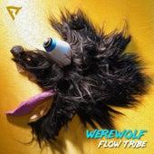 Werewolf by Flow Tribe