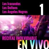 Recital Inolvidable: Los Iracundos, Los Doltons, Los Angeles Negros, Vol. 1 (En Vivo) de Los Iracundos