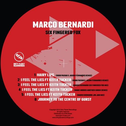 Six Fingered Fox by Marco Bernardi