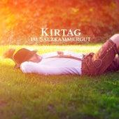 Kirtag im Salzkammergut von Various Artists