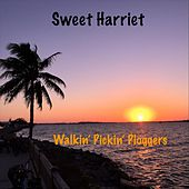 Walkin' Pickin' Ploggers by Sweet Harriet