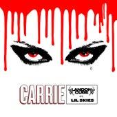 Carrie de Landon Cube