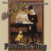 Echo & Boo by Pavlov's Dog