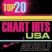 Top 20 Chart Hits - 2010.1  USA by The CDM Chartbreakers