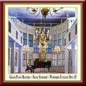Grand Piano Masters - Schubert: Wanderer Fantasy Op.15 / Wanderer-Fantasie / Fantaisie Wanderer by Franz Vorraber