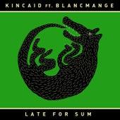 Late for Sum de Kincaid