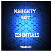 Naughty Boy Essentials, Vol. 2 by Various Artists
