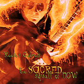 The Sacred Squall Of Now by Reeves Gabrels