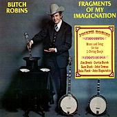 Fragments Of My Imagicnation von Butch Robins
