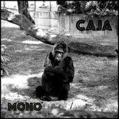 Caja by Mono
