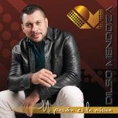 Mi pasion es la musica de Dilso Mendoza