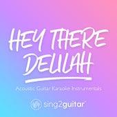 Hey There Delilah (Acoustic Guitar Karaoke Instrumentals) de Sing2Guitar