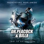 Trip to Antarctica di Dr. Peacock
