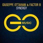 Synergy by Giuseppe Ottaviani