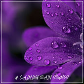 # Calming Rain Sounds by Nature Sounds (1)