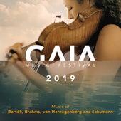 GAIA Music Festival 2019 (Live) de Simon Bucher