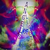 Sunny Beat de Angels Of Light