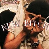 New Bitch de Scottie B