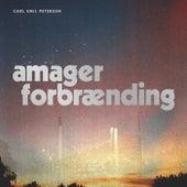 Amager Forbrænding by Carl Emil Petersen