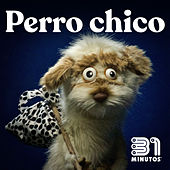 Perro Chico by 31 Minutos