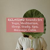 Relaxing Sounds for Yoga, Meditation, Sleep, Study, Spa, Massage, Calm de Various Artists