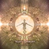 Avaarya Luminatus, Compiled by JohnC (Vol. 1) by Various Artists