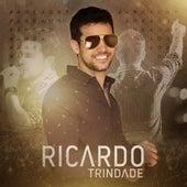 Área 37 de Ricardo Trindade