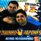 Ao Vivo no Guarapirão, Vol. 13 von Toninho e Japonês
