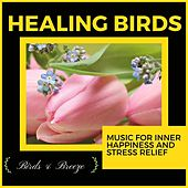 Healing Birds - Music For Inner Happiness And Stress Relief di Ambient 11