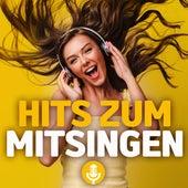 Hits zum mitsingen von Various Artists