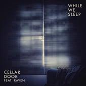 While We Sleep (feat. Raven) von Cellar Door