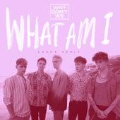 What Am I (SONDR Remix) di Why Don't We