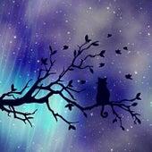 Night (Instrumental Version) de Darvin