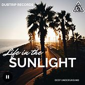 Life in the Sunlight by Various Artists