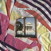 S/T von Pleasure Principle