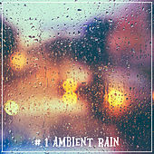 # 1 Ambient Rain by Nature Sounds (1)