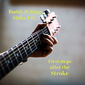 First Steps After The Stroke de Buddy B. King