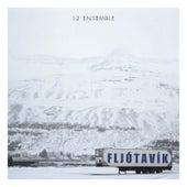 Birgisson: Fljótavík by 12 Ensemble