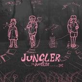 Jungler og juveler by Philip André