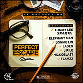 Perfect Escape Riddim von Various Artists