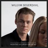Ingenting Jag Säger Hjälper Nu de William Segerdahl