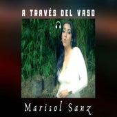 A Través del Vaso de Marisol Sanz